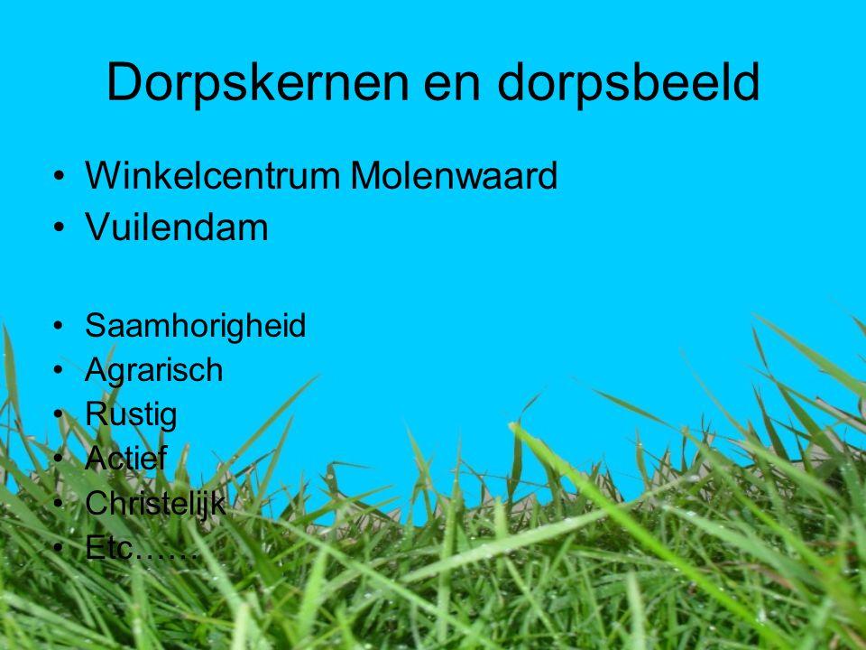 Dorpskernen en dorpsbeeld Winkelcentrum Molenwaard Vuilendam Saamhorigheid Agrarisch Rustig Actief Christelijk Etc……