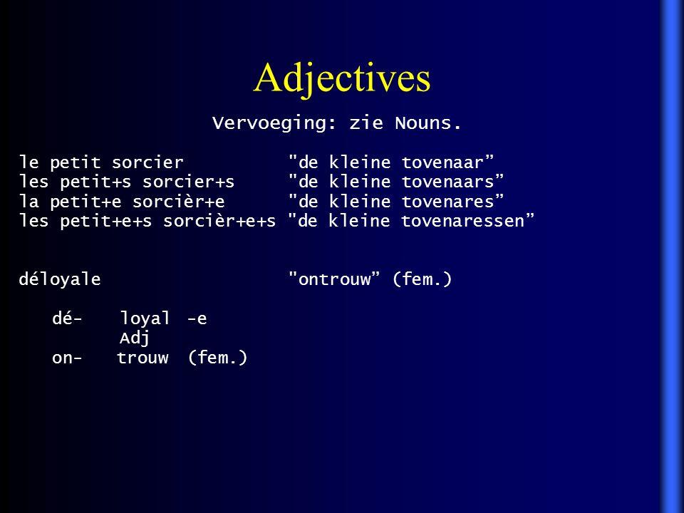 Adjectives Vervoeging: zie Nouns. le petit sorcier