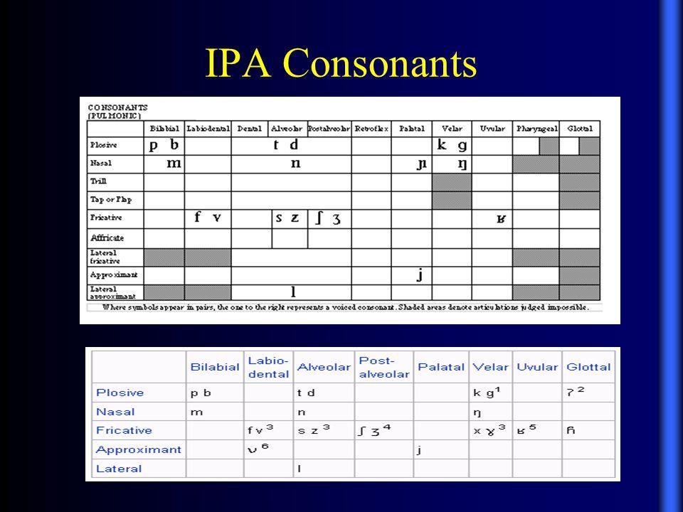 IPA Consonants