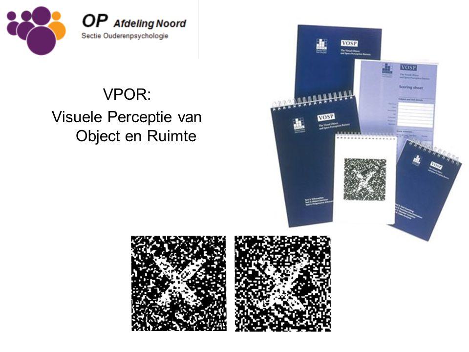 VPOR: Visuele Perceptie van Object en Ruimte