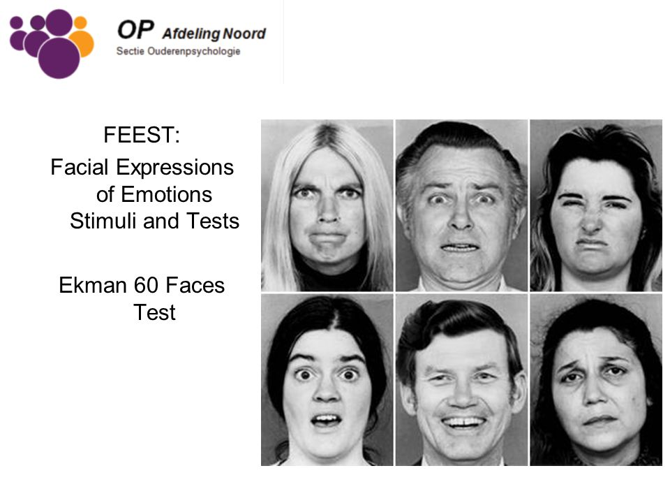 FEEST: Facial Expressions of Emotions Stimuli and Tests Ekman 60 Faces Test