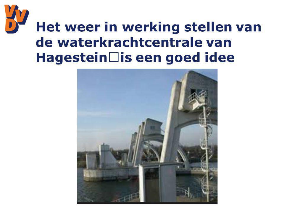Het weer in werking stellen van de waterkrachtcentrale van Hagestein is een goed idee
