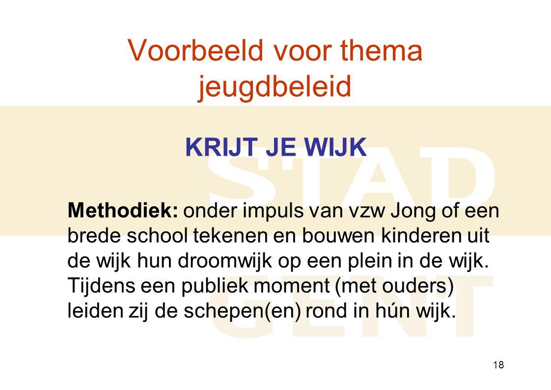 18 Voorbeeld voor thema jeugdbeleid KRIJT JE WIJK Methodiek: onder impuls van vzw Jong of een brede school tekenen en bouwen kinderen uit de wijk hun droomwijk op een plein in de wijk.