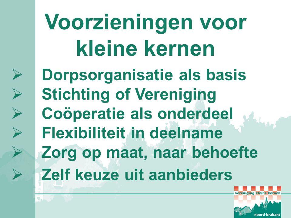 Voorzieningen voor kleine kernen  Dorpsorganisatie als basis  Stichting of Vereniging  Coöperatie als onderdeel  Flexibiliteit in deelname  Zorg