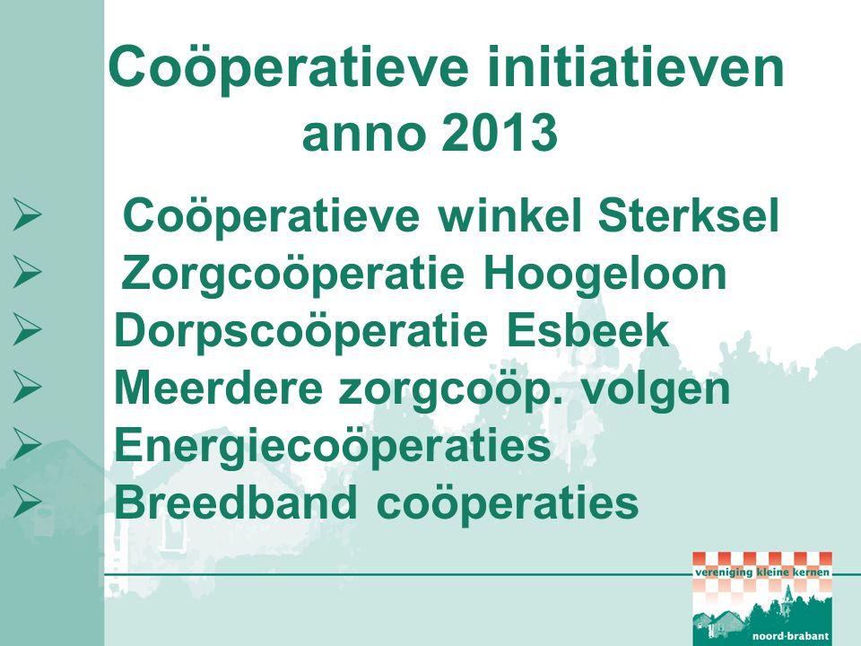 Coöperatieve initiatieven anno 2013  Coöperatieve winkel Sterksel  Zorgcoöperatie Hoogeloon  Dorpscoöperatie Esbeek  Meerdere zorgcoöp. volgen  E