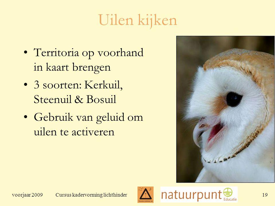 voorjaar 2009 Cursus kadervorming lichthinder 19 Uilen kijken Territoria op voorhand in kaart brengen 3 soorten: Kerkuil, Steenuil & Bosuil Gebruik van geluid om uilen te activeren