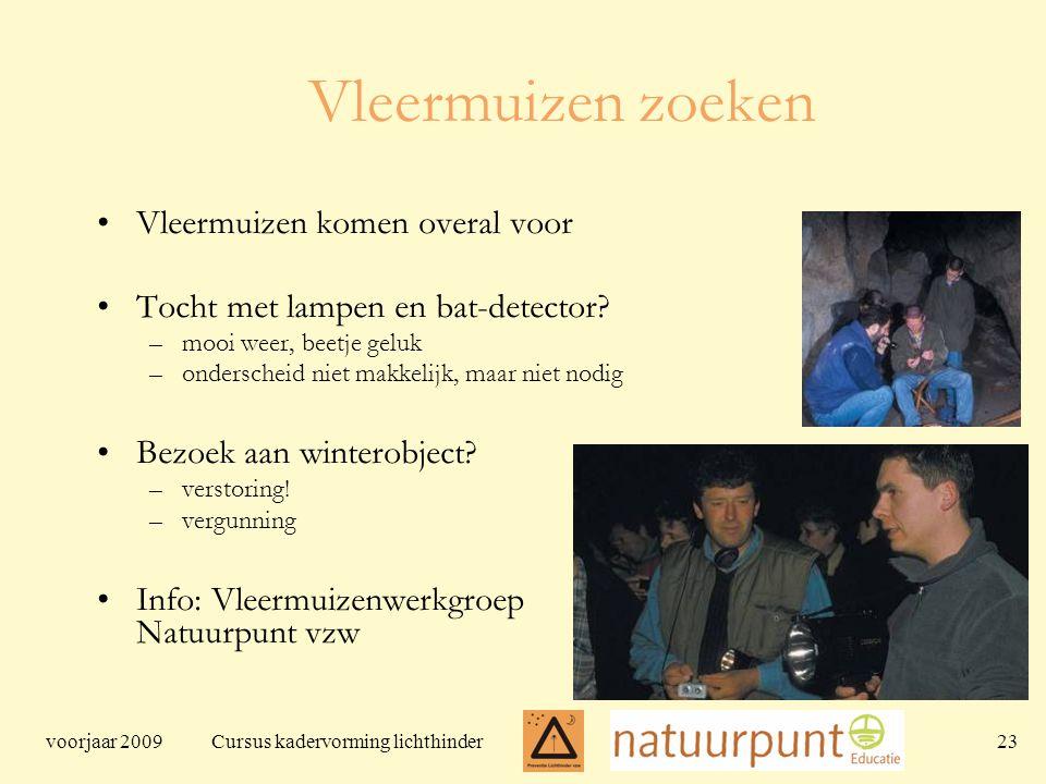 voorjaar 2009 Cursus kadervorming lichthinder 23 Vleermuizen zoeken Vleermuizen komen overal voor Tocht met lampen en bat-detector.