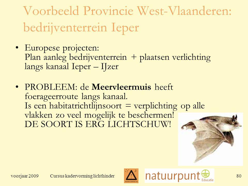 voorjaar 2009 Cursus kadervorming lichthinder 80 Voorbeeld Provincie West-Vlaanderen: bedrijventerrein Ieper Europese projecten: Plan aanleg bedrijventerrein + plaatsen verlichting langs kanaal Ieper – IJzer PROBLEEM: de Meervleermuis heeft foerageerroute langs kanaal.