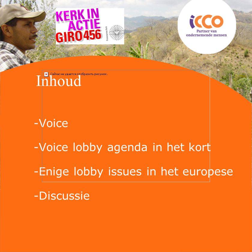 Inhoud -Voice -Voice lobby agenda in het kort -Enige lobby issues in het europese -Discussie