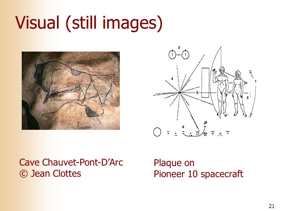 21 Visual (still images) Cave Chauvet-Pont-D'Arc © Jean Clottes Plaque on Pioneer 10 spacecraft