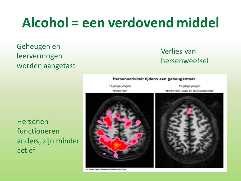 Alcohol = een verdovend middel Hersenen functioneren anders, zijn minder actief Verlies van hersenweefsel Geheugen en leervermogen worden aangetast