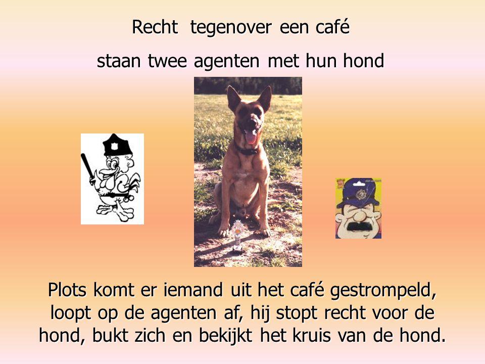Recht tegenover een café staan twee agenten met hun hond Plots komt er iemand uit het café gestrompeld, loopt op de agenten af, hij stopt recht voor de hond, bukt zich en bekijkt het kruis van de hond.
