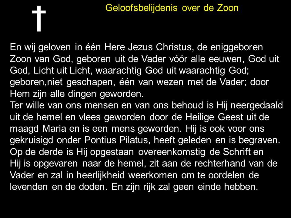 Geloofsbelijdenis over de Zoon En wij geloven in één Here Jezus Christus, de eniggeboren Zoon van God, geboren uit de Vader vóór alle eeuwen, God uit