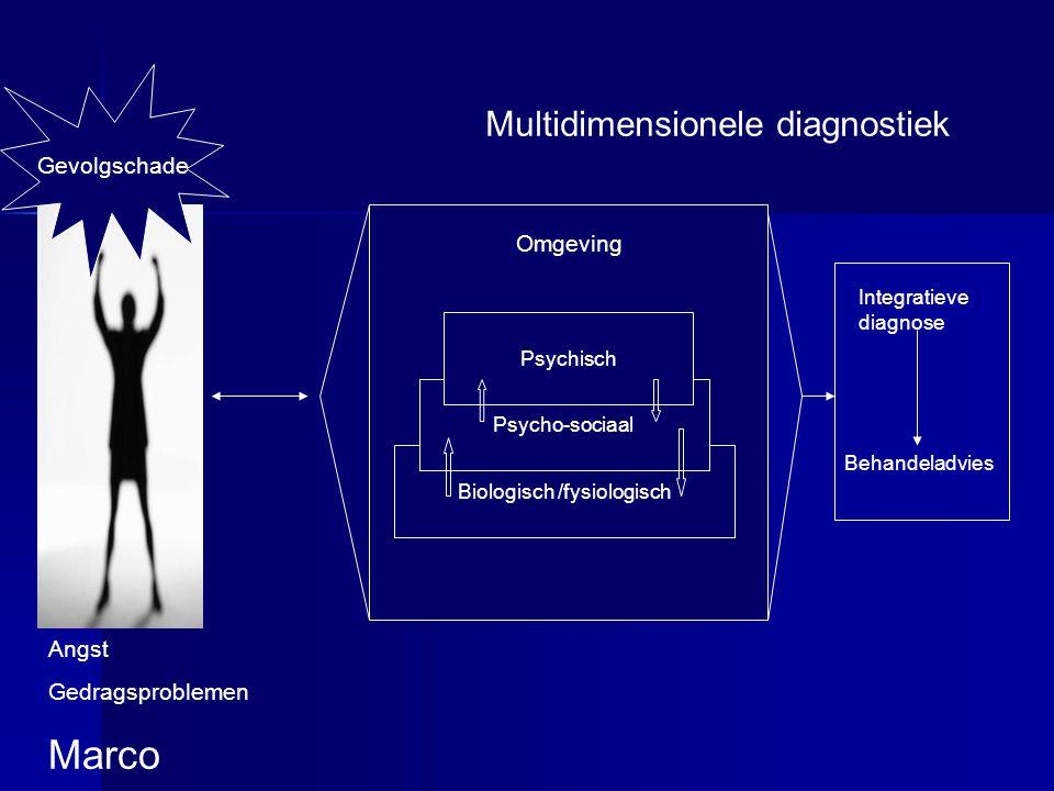 Gevolgschade Biologisch /fysiologisch Psycho-sociaal Psychisch Multidimensionele diagnostiek Omgeving Angst Gedragsproblemen Marco Integratieve diagno