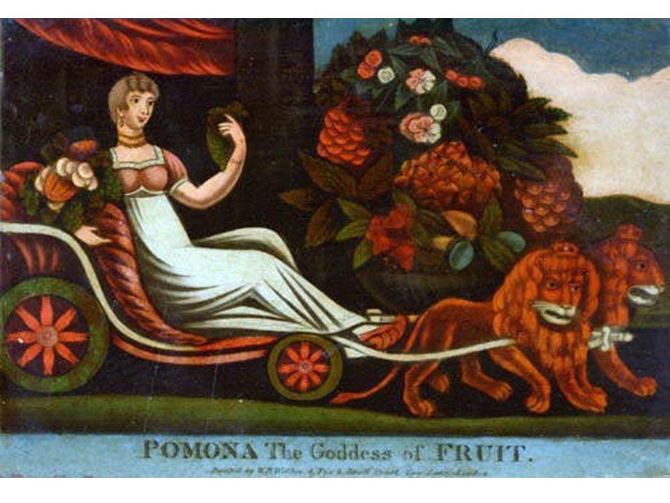 pomona-hagdag041006