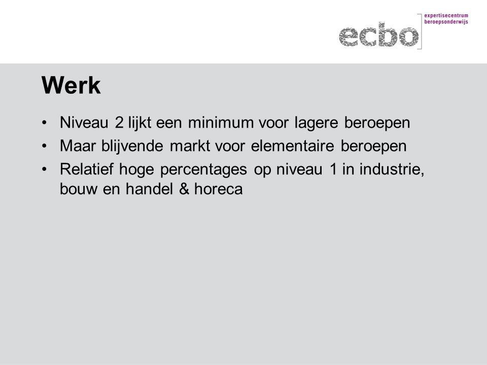 Werk Niveau 2 lijkt een minimum voor lagere beroepen Maar blijvende markt voor elementaire beroepen Relatief hoge percentages op niveau 1 in industrie, bouw en handel & horeca
