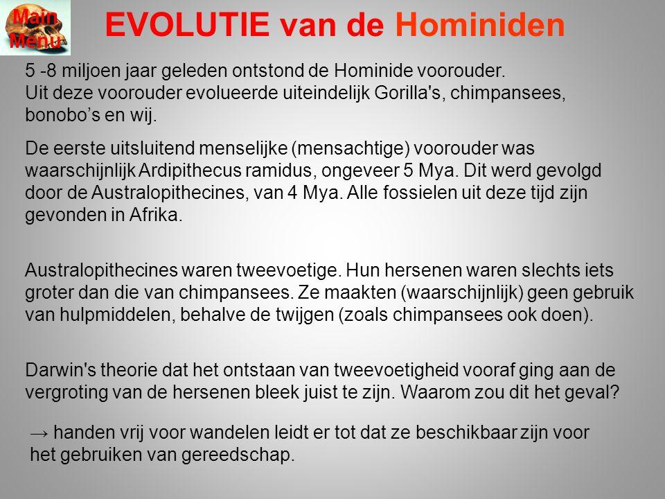 EVOLUTIE van de Hominiden 5 -8 miljoen jaar geleden ontstond de Hominide voorouder. Uit deze voorouder evolueerde uiteindelijk Gorilla's, chimpansees,