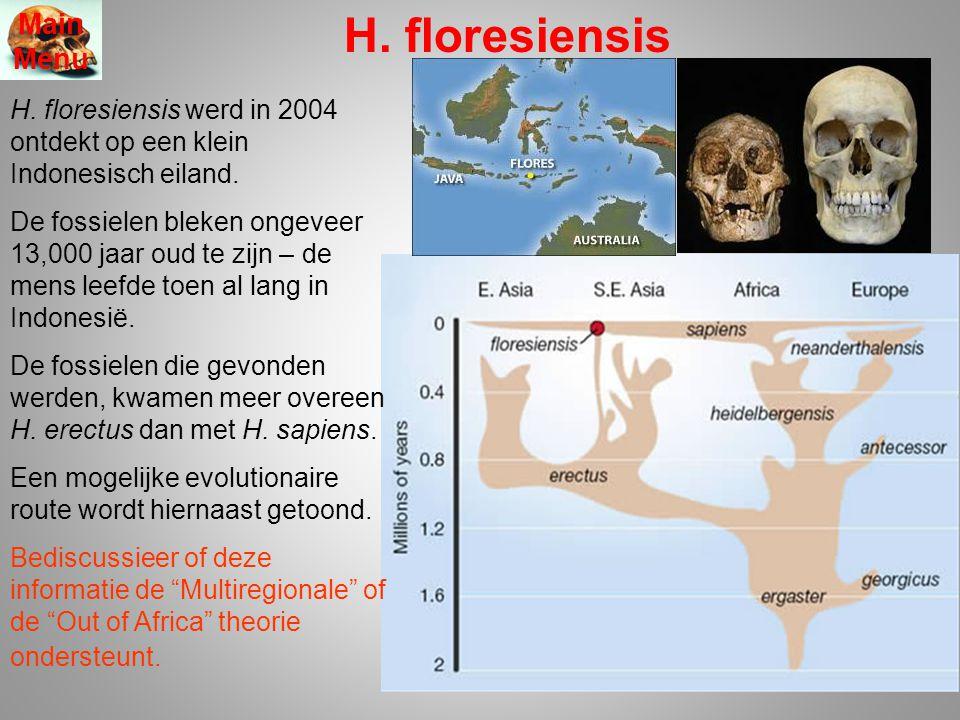 H. floresiensis H. floresiensis werd in 2004 ontdekt op een klein Indonesisch eiland. De fossielen bleken ongeveer 13,000 jaar oud te zijn – de mens l