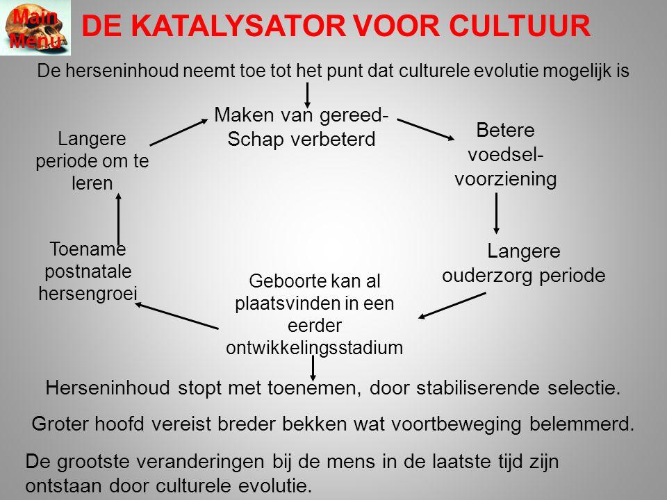 DE KATALYSATOR VOOR CULTUUR Main Menu De herseninhoud neemt toe tot het punt dat culturele evolutie mogelijk is Herseninhoud stopt met toenemen, door stabiliserende selectie.
