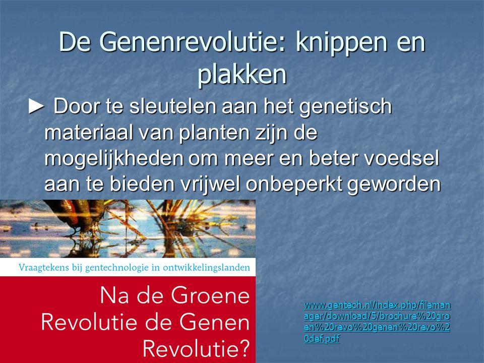 De Genenrevolutie: knippen en plakken ► Door te sleutelen aan het genetisch materiaal van planten zijn de mogelijkheden om meer en beter voedsel aan t