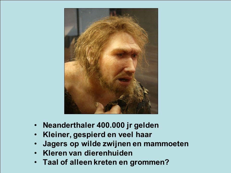 Neanderthaler 400.000 jr gelden Kleiner, gespierd en veel haar Jagers op wilde zwijnen en mammoeten Kleren van dierenhuiden Taal of alleen kreten en g