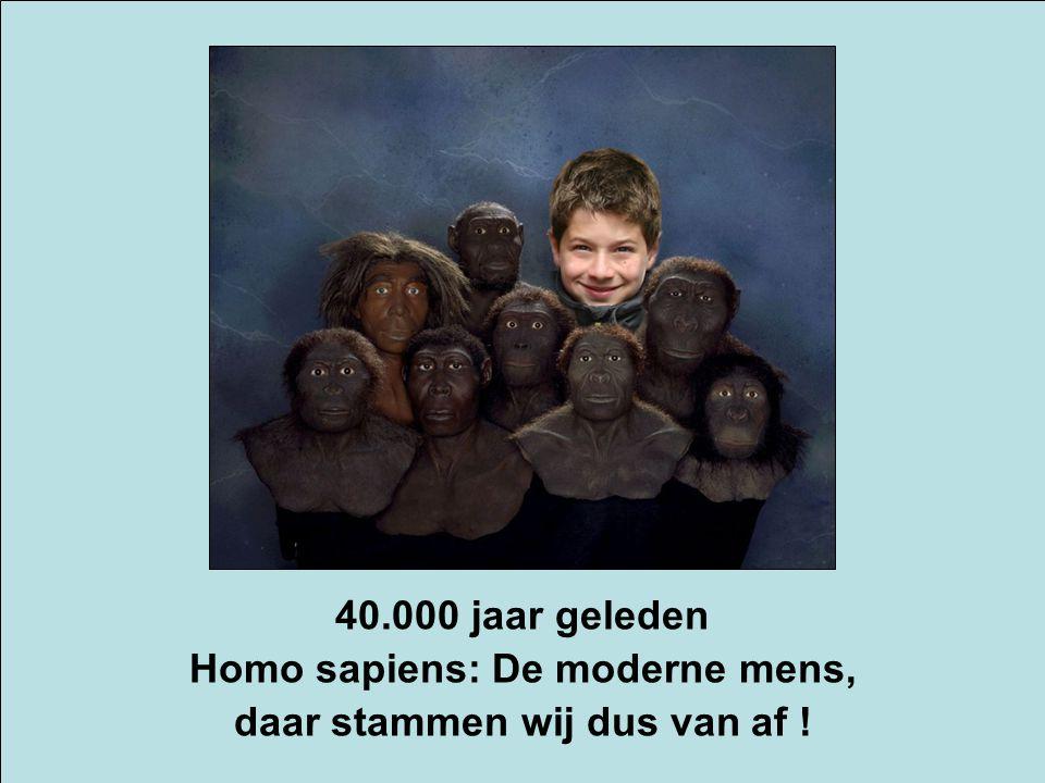 40.000 jaar geleden Homo sapiens: De moderne mens, daar stammen wij dus van af !