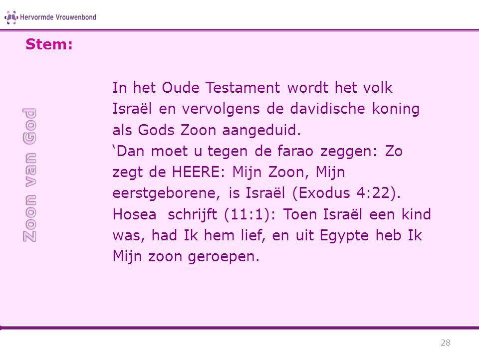 In het Oude Testament wordt het volk Israël en vervolgens de davidische koning als Gods Zoon aangeduid. 'Dan moet u tegen de farao zeggen: Zo zegt de
