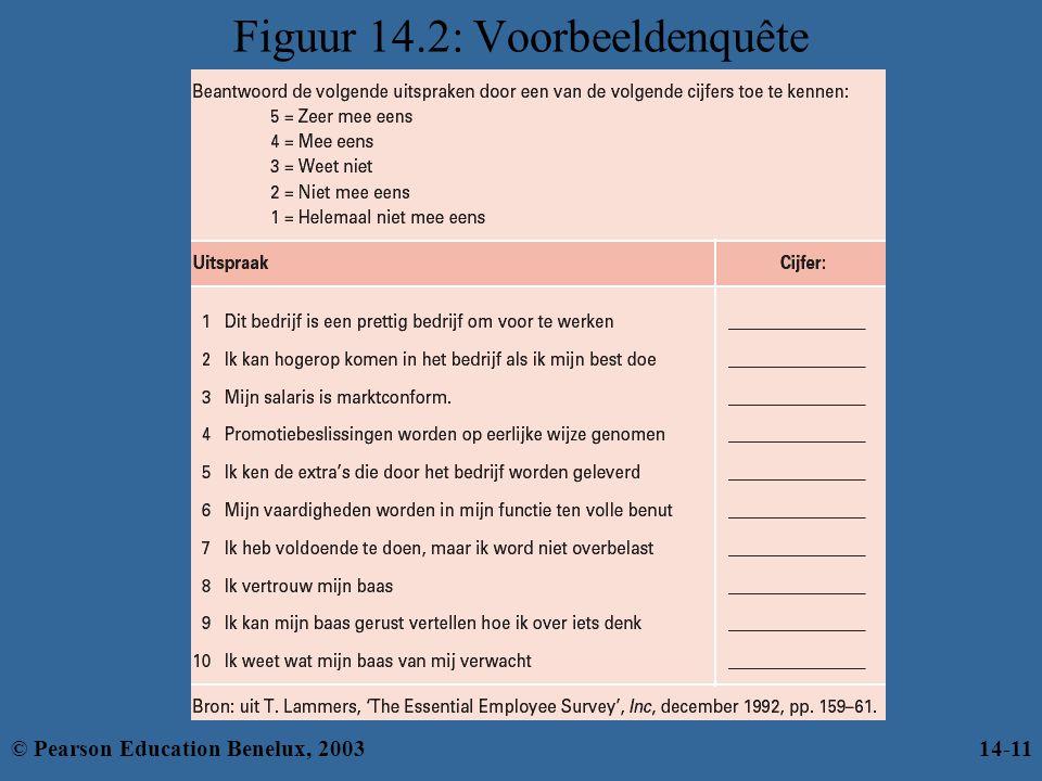 Figuur 14.2: Voorbeeldenquête © Pearson Education Benelux, 200314-11
