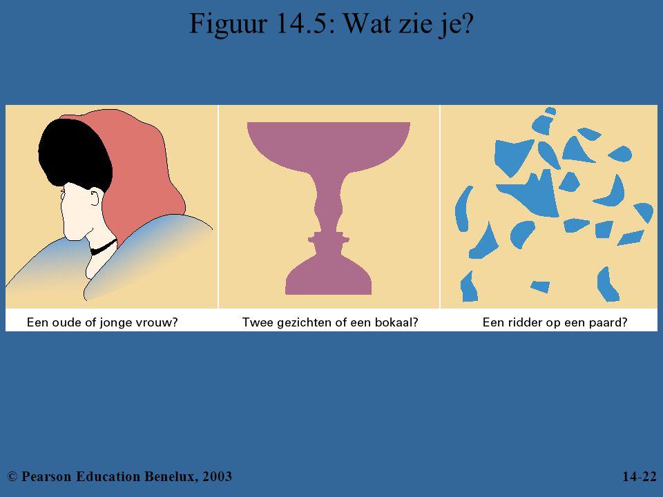 Figuur 14.5: Wat zie je? © Pearson Education Benelux, 200314-22