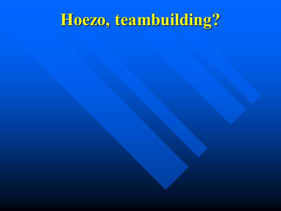 Hoezo, teambuilding?