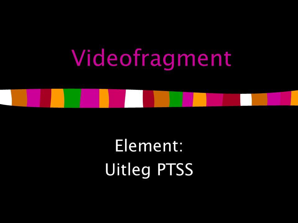 Videofragment Element: Uitleg PTSS