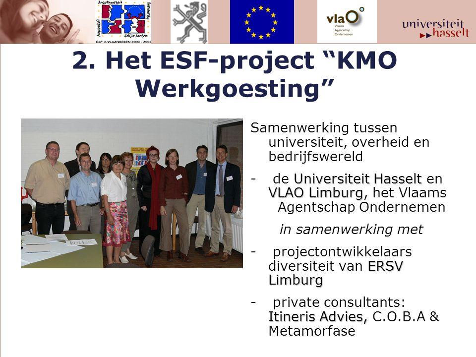 """2. Het ESF-project """"KMO Werkgoesting"""" Samenwerking tussen universiteit, overheid en bedrijfswereld Universiteit Hasselt VLAO Limburg - de Universiteit"""