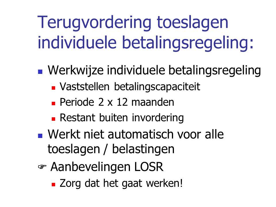 Terugvordering toeslagen individuele betalingsregeling: Werkwijze individuele betalingsregeling Vaststellen betalingscapaciteit Periode 2 x 12 maanden