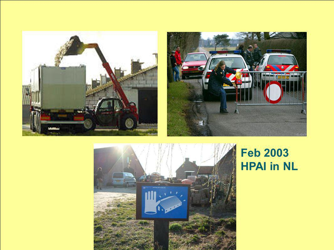 Feb 2003 HPAI in NL