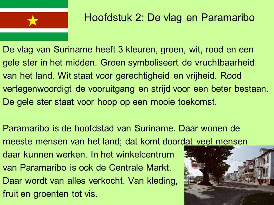 Hoofdstuk 2: De vlag en Paramaribo De vlag van Suriname heeft 3 kleuren, groen, wit, rood en een gele ster in het midden.