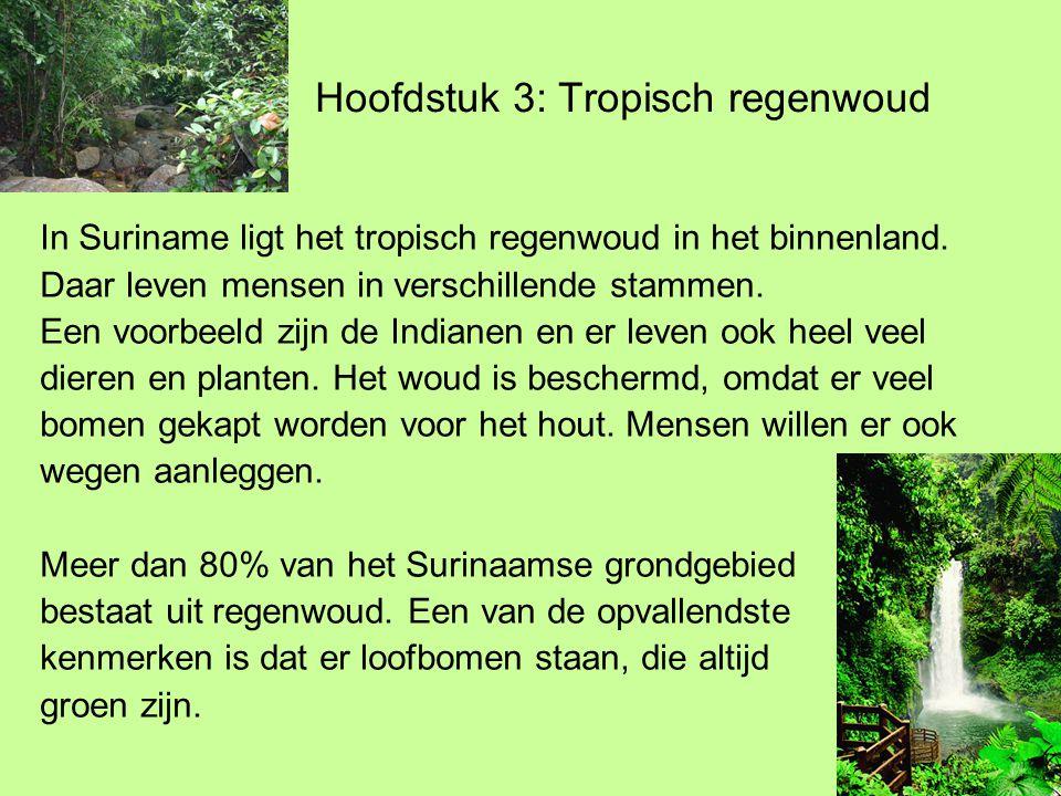 Hoofdstuk 3: Tropisch regenwoud In Suriname ligt het tropisch regenwoud in het binnenland.