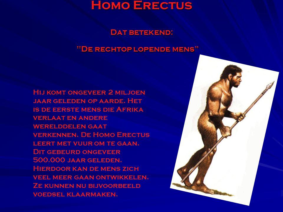 Homo Erectus Dat betekend: