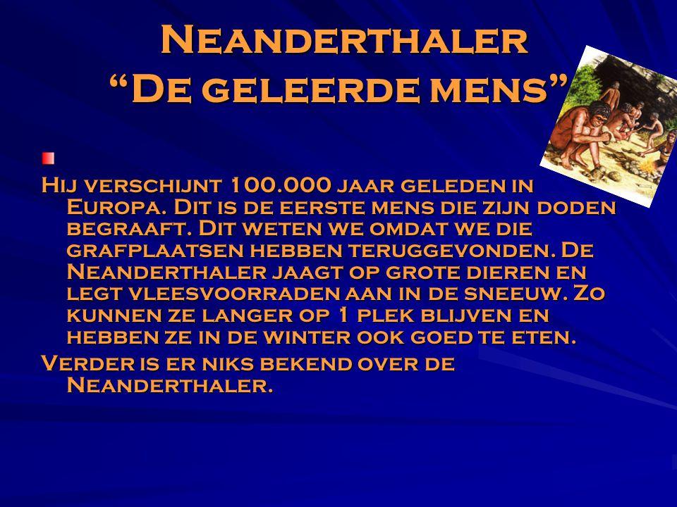 """Neanderthaler """"De geleerde mens"""" Hij verschijnt 100.000 jaar geleden in Europa. Dit is de eerste mens die zijn doden begraaft. Dit weten we omdat we d"""