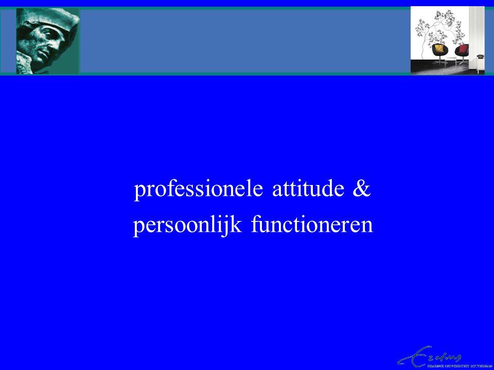 professionele attitude & persoonlijk functioneren