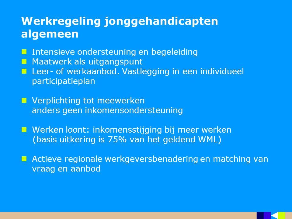 Werkregeling jonggehandicapten algemeen Intensieve ondersteuning en begeleiding Maatwerk als uitgangspunt Leer- of werkaanbod. Vastlegging in een indi