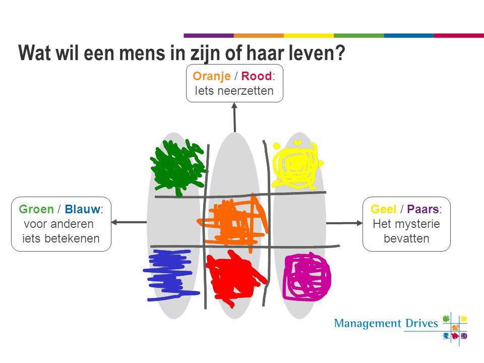 Denkstijlen Veel Geel en Blauw: rationaliteit Veel Groen en Paars: gevoel Veel Oranje en Rood: actie