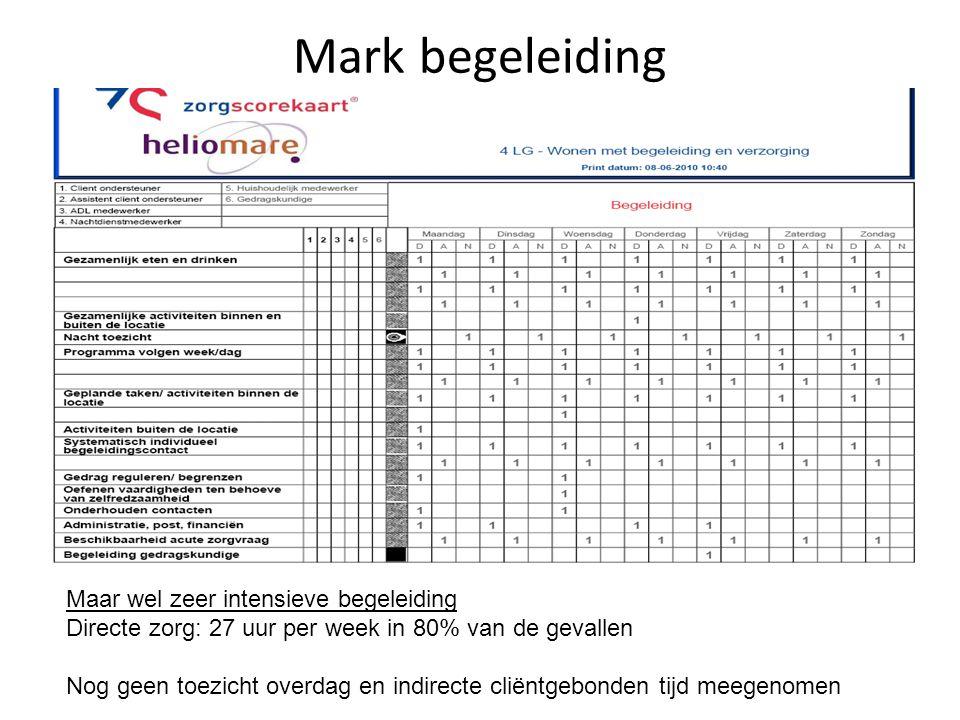 Mark begeleiding Maar wel zeer intensieve begeleiding Directe zorg: 27 uur per week in 80% van de gevallen Nog geen toezicht overdag en indirecte clië