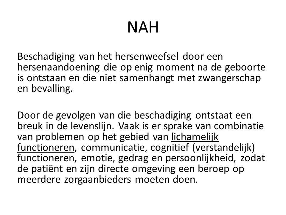 Woonzorg voor mensen met NAH in Krommenie Wonen met intensieve begeleiding en enige verzorging Continue toezicht/ beschikbaarheid Pro- actief begeleiden i.p.v.