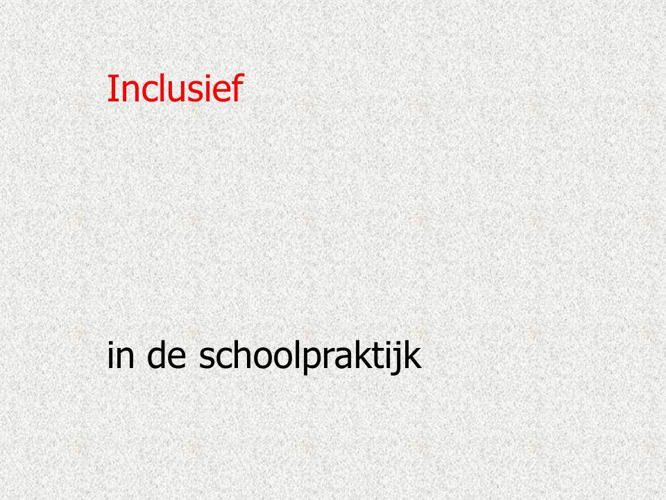 Inclusief in de schoolpraktijk