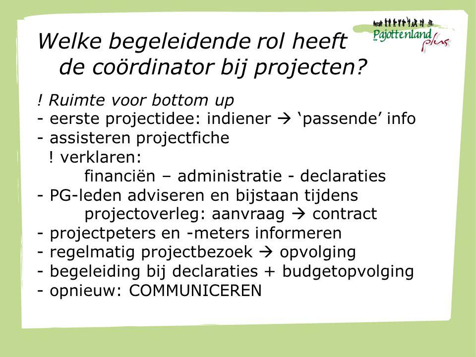 Welke begeleidende rol heeft de coördinator bij projecten.