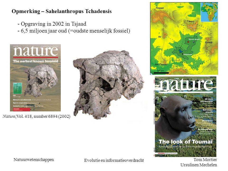 Tom Mortier Ursulinen Mechelen Natuurwetenschappen Evolutie en informatieoverdracht Opmerking – Sahelanthropus Tchadensis - Opgraving in 2002 in Tsjaa