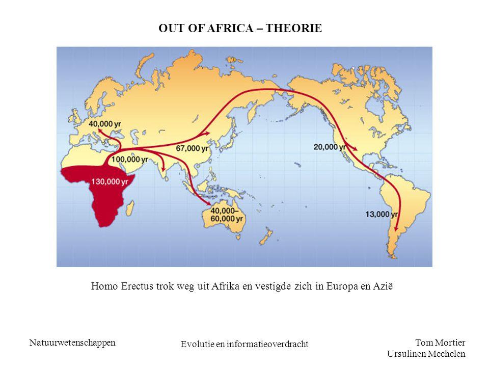 Tom Mortier Ursulinen Mechelen Natuurwetenschappen Evolutie en informatieoverdracht OUT OF AFRICA – THEORIE Homo Erectus trok weg uit Afrika en vestig