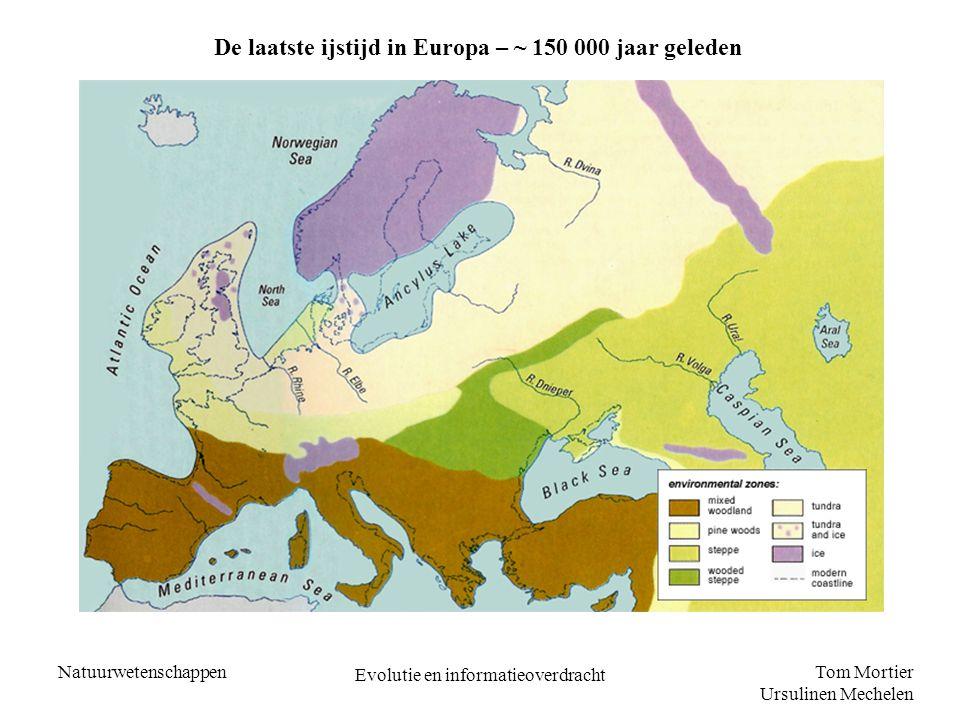 Tom Mortier Ursulinen Mechelen Natuurwetenschappen Evolutie en informatieoverdracht De laatste ijstijd in Europa – ~ 150 000 jaar geleden