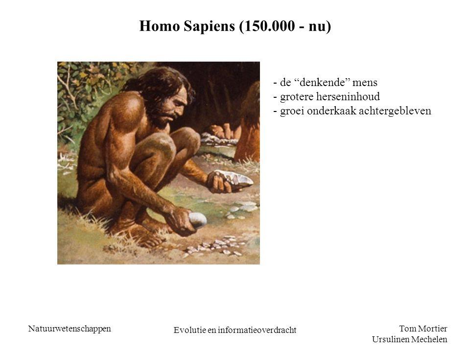 """Tom Mortier Ursulinen Mechelen Natuurwetenschappen Evolutie en informatieoverdracht Homo Sapiens (150.000 - nu) - de """"denkende"""" mens - grotere herseni"""