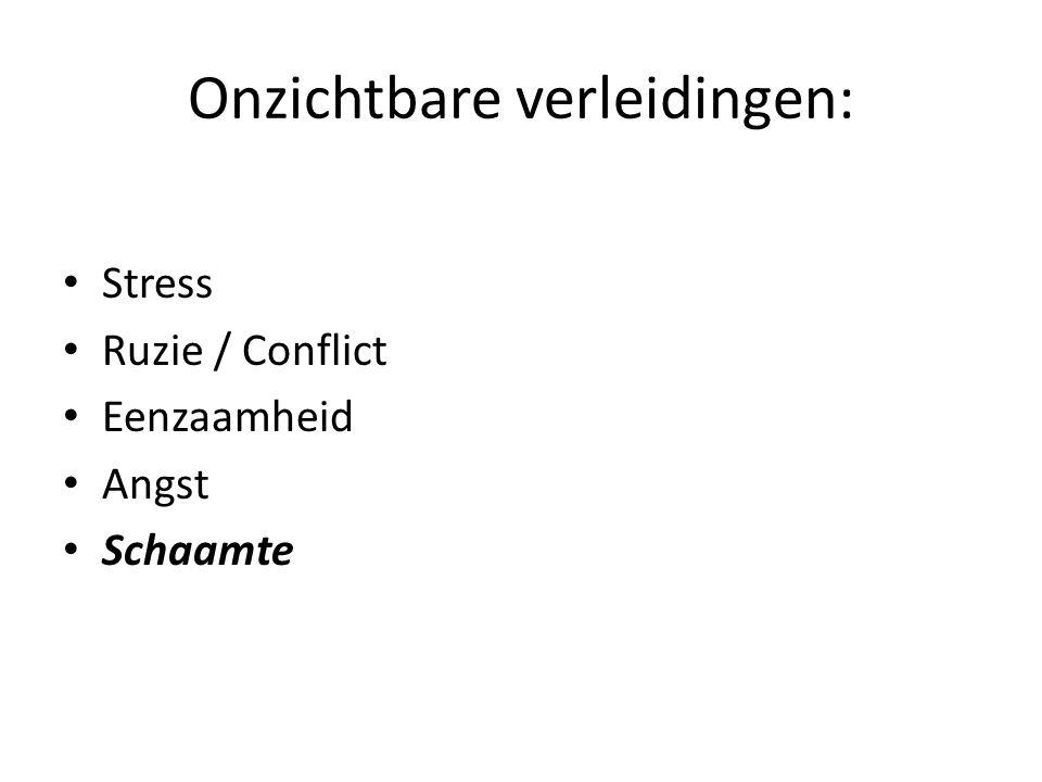 Onzichtbare verleidingen: Stress Ruzie / Conflict Eenzaamheid Angst Schaamte